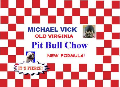 Michael Vick -- Victim or Violence-Fighter?