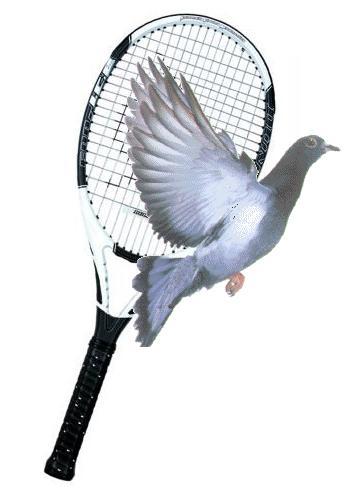 Passing Shots at Wimbledon